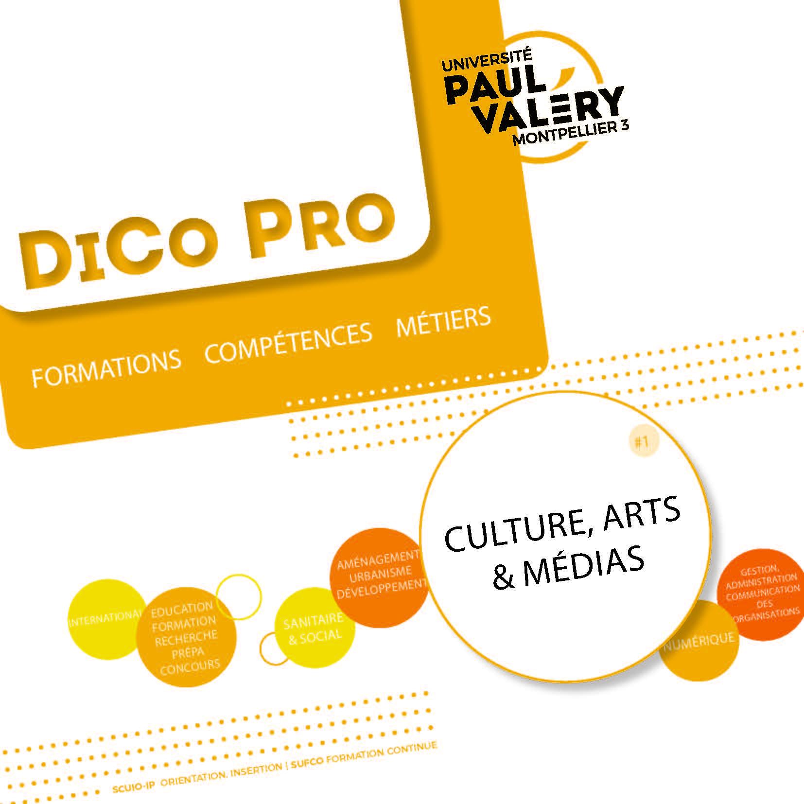 DicoPro secteur culture arts médias