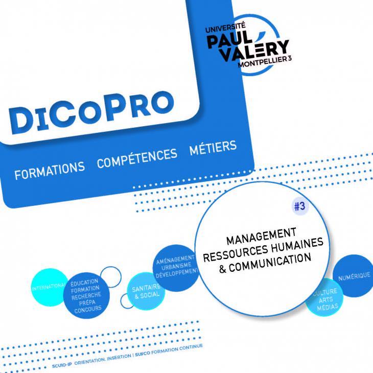 DiCoPro management ressources humaines et communication