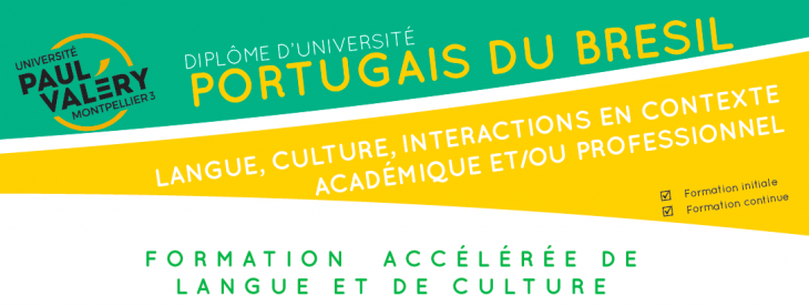 Portugais du Brésil : langue,culture, interactions
