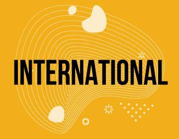 vignette international