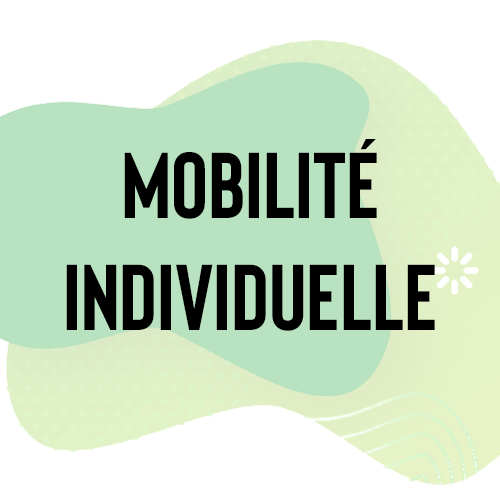 mobilite_individuelle